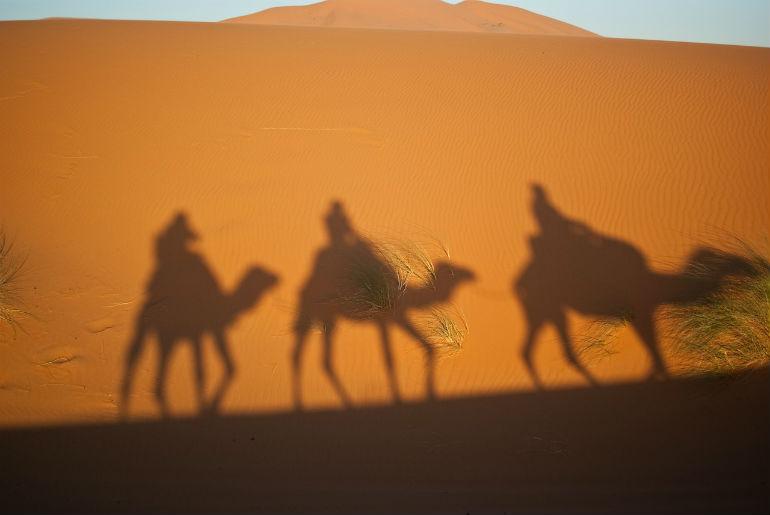 Agent: deve i pustinja